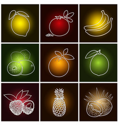 Tropical fruit icons vector