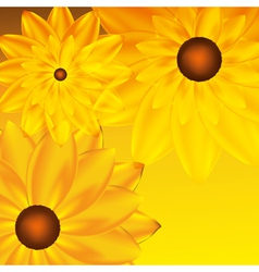 card with sunflower vector image