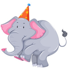 Gray elephant with party hat vector