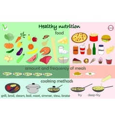 Infographic food healthy nutrition vector