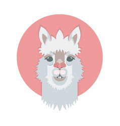 Cute adorable alpaca or lama face vector