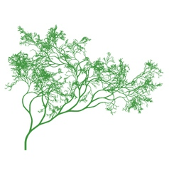 detailed green tree vector image