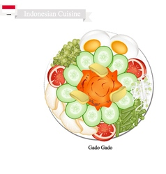 Gado Gado or Indonesian Vegetable Salad vector image