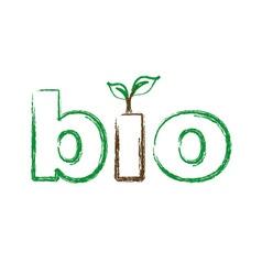 Bio logo sketched vector image vector image