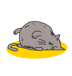 fat cat vector image vector image
