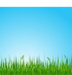 grassy field vector image vector image