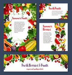 Templates for exotic garden fruits berries vector
