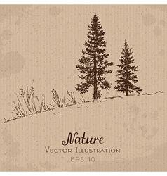Two fir-trees vector