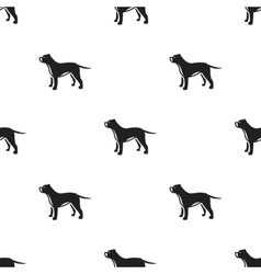 Pitbull icon in black style for web vector image
