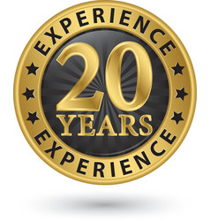 20 years experience gold label vector image