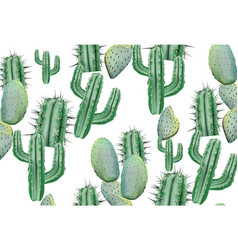 Cactus pattern texture on white modern vector