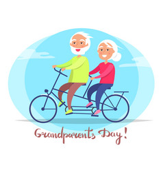 Grandparents day senior couple on bicycle vector