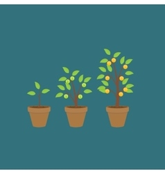 Money tree financial growth flat concept vector