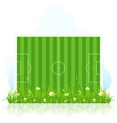football field with grass vector image