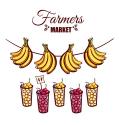 farmers market berries bananas vector image