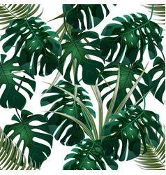 jungle green thickets of tropical palm leaves and vector image vector image