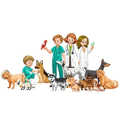 Vets and many animals vector image