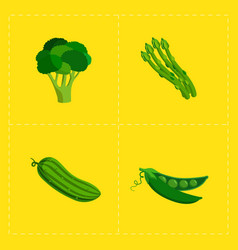 colorful vegetable icon set on bright background vector image