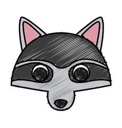 Racoon animal cartoon vector
