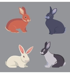 cartoon rabbits different vector image