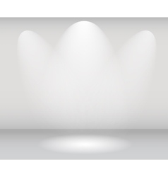Light in Gallery vector image