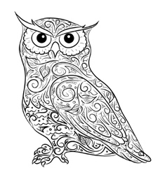 Hand drawing owl vector
