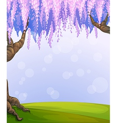 A park with two big trees vector image