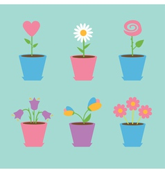 Set of six flowers in pots blue background card vector