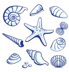 Starfishes cockleshells set vector