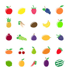 colorful fruit silhouettes vector image vector image