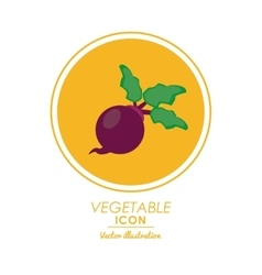 Onion icon healthy food design graphic vector