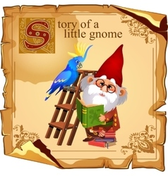 Cute gnome with parrot reading a book vector