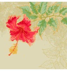Hibiscus flower on toned background vector image vector image