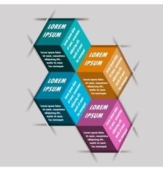 Infographics options design elements vector