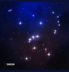 orion constellation in the night sky vector image