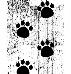 paw prints on grunge background vector image