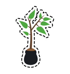 plant icon image vector image