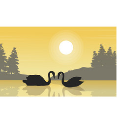 Silhouette of swan beauty landscape on lake vector