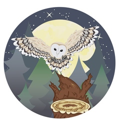 Barn owl on a tree stump3 vector