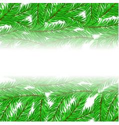 Fir green branches pattern vector