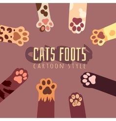 Background with cats foots in cartoon style vector