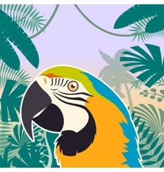 Macaw on the Jungle Background vector image