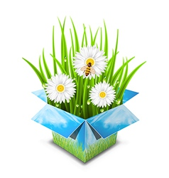 Spring surprise vector