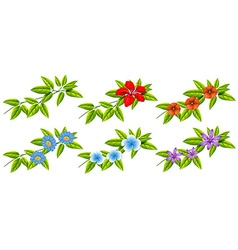Flowers and green leaves vector