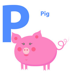 cute pink pig on alphabet icon character p drawn vector image vector image