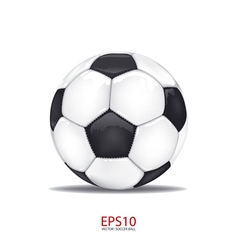 football soccer ball isolated on white vector image