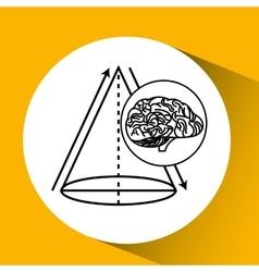 Geometry brain school knowledge vector
