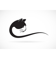 Image of an cat face design on white background vector