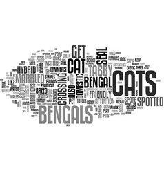 Bengal cat text word cloud concept vector
