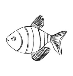 Monochrome blurred contour with fish vector